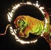 Цирки в Челябинске